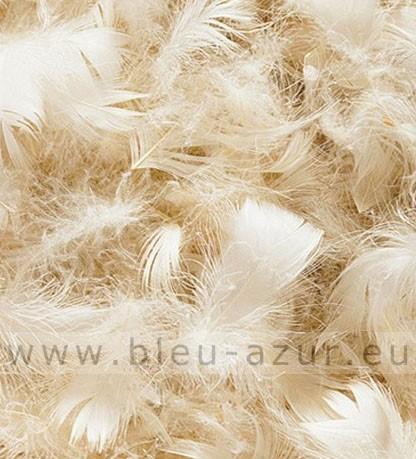 plumes d oie et canard blanc achat offre sp ciales fournitures de tapissier. Black Bedroom Furniture Sets. Home Design Ideas